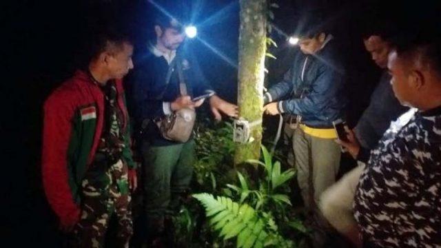 Ditemukan Jejak Harimau Dekat Pemukiman Masyarakat