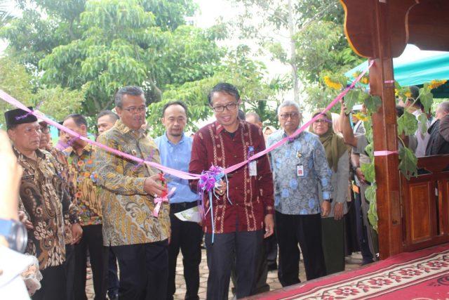 Pisang Kepok Tanjung, Siap Menjadi Ikon Kab. Solok