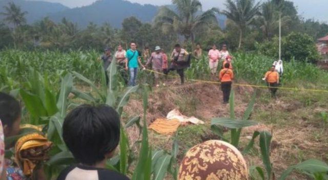 Pasmawati Ditemukan Tak Bernyawa di Ladang Jagung