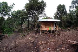Jalur Baru Mendaki Gunung Talang, 2 Jam via Bukik Bulek